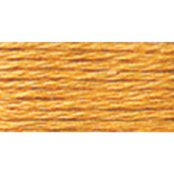 DMC Six Strand Embroidery Cotton 8.7 Yards-Pale Golden Brown